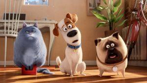 Pets animated