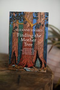 Book Suzanne Simard Finding the Mother Tree Biography Forest